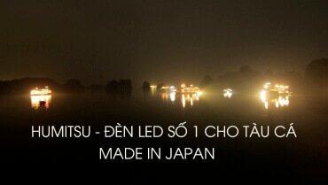 Đèn LED Nhật Bản cho tàu cá